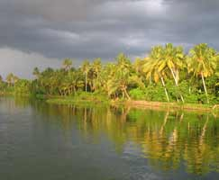 Travel Package Vagamon
