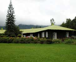 Holiday Package Vagamon
