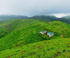 Honeymoon Tour To Vagamon